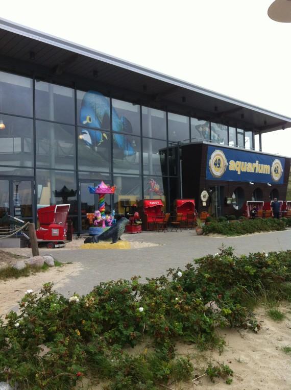 Sylt_Westerland_Aquarium_1014