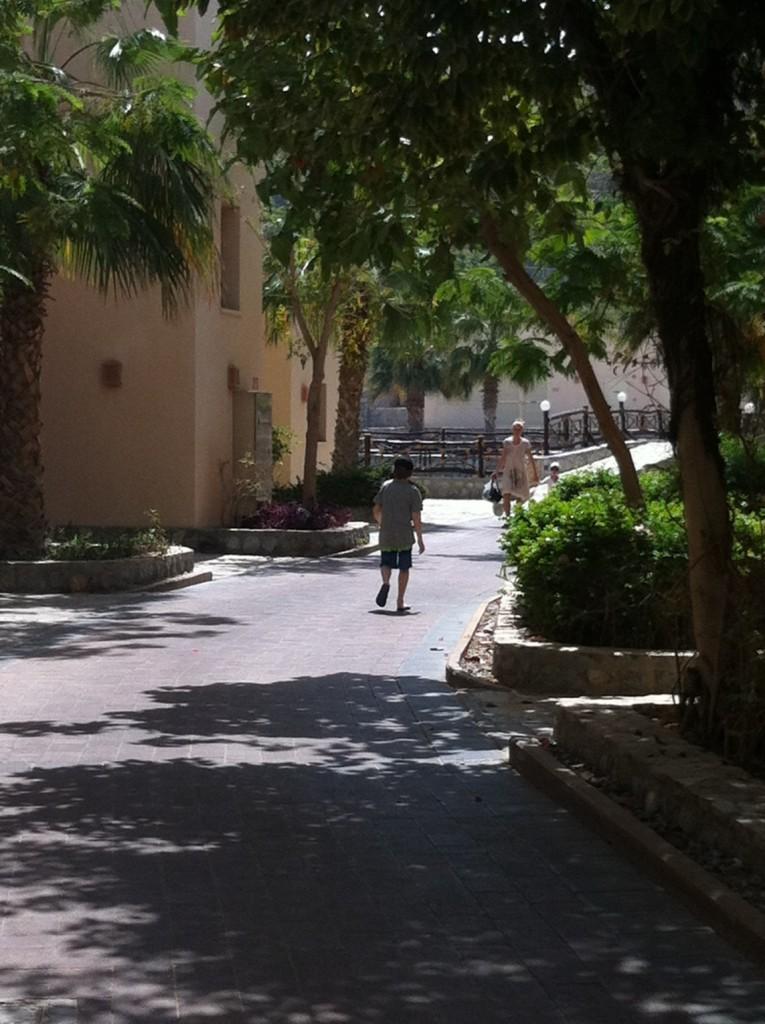 Cove Rotana Fußwege