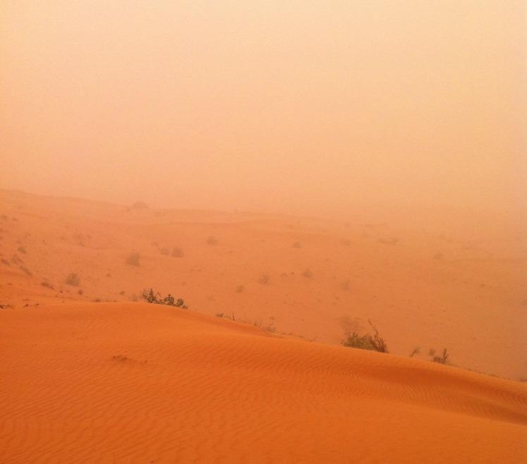 Wüstensafarie bei Sandsturm