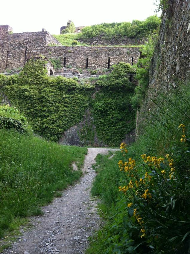 Burg Rheinfels