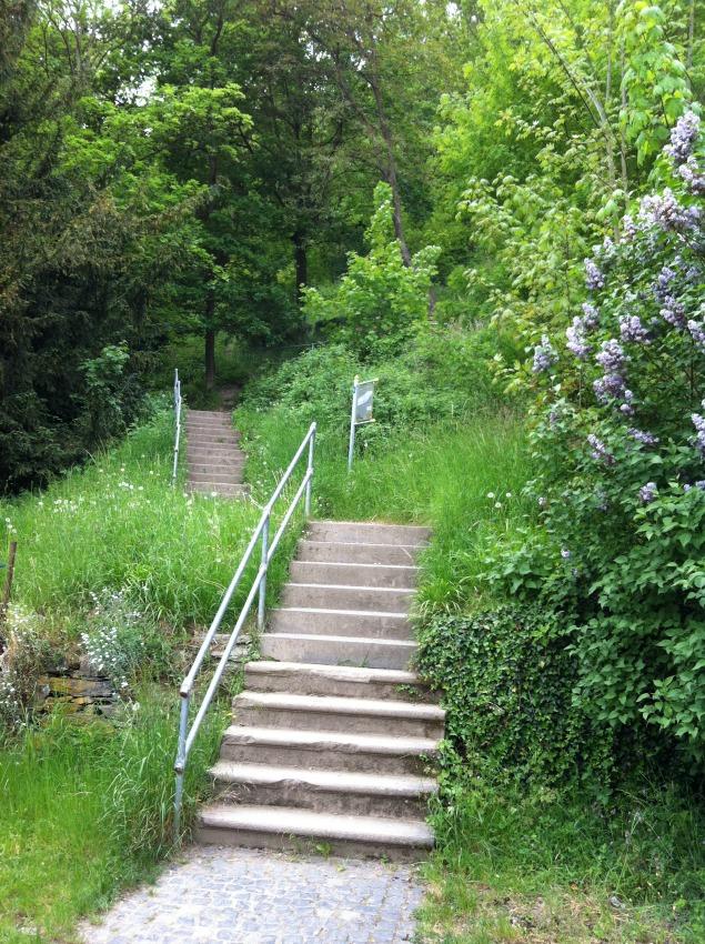 Rheinfels_Garten1