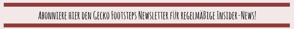 Banner Newsletter im Beitrag