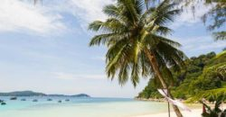 Perhentian Besar Beach Palme Reiseaufnahmen
