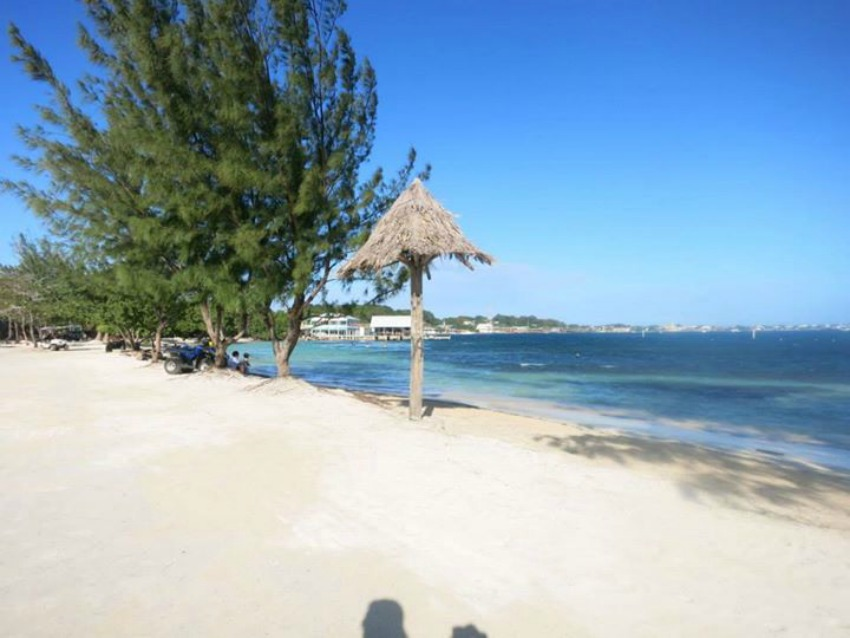 Utila Beach Travelicia