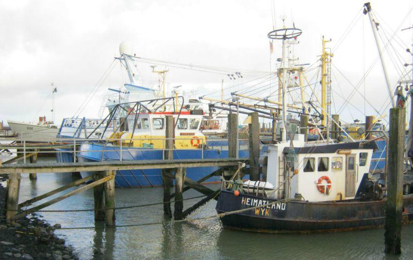 Föhr Boote Steffistraumzeit