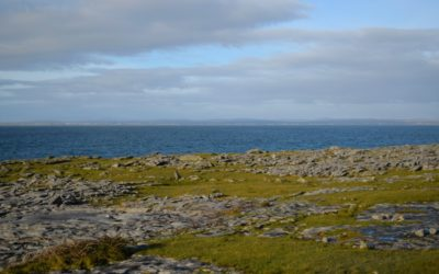 Roadtrip durch Irlands Westen – Burren und Cliffs of Moher