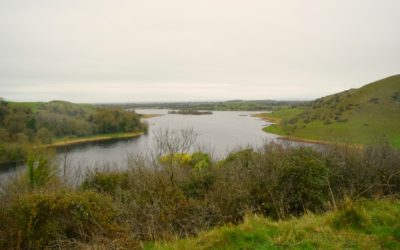 Irland – Reise in die Vergangenheit in Lough Gur