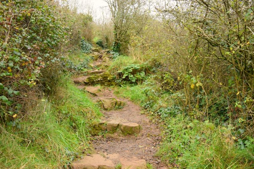 Irland Lough Gur Weg