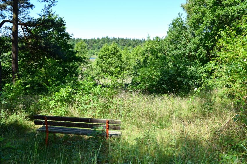 All Season Park - Müritzer Nationalpark Wald