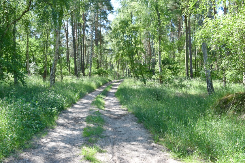 All Season Park - Müritzer Nationalpark Weg