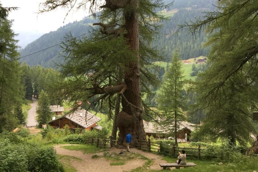familienreise-ins-meraner-land-urlaerchen