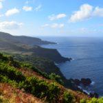 Azoren – Unterwegs auf Terceira