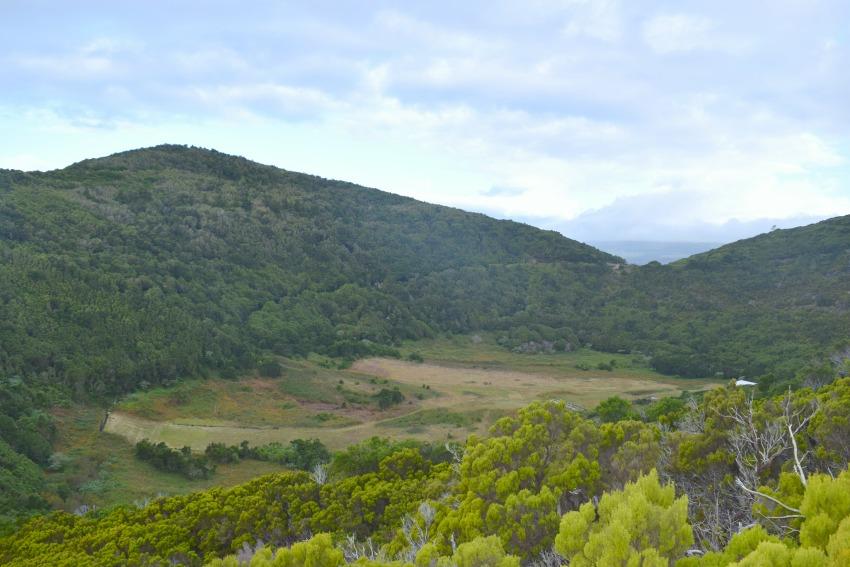 Azoren Unterwegs auf Terceira Monte Brasil Krater