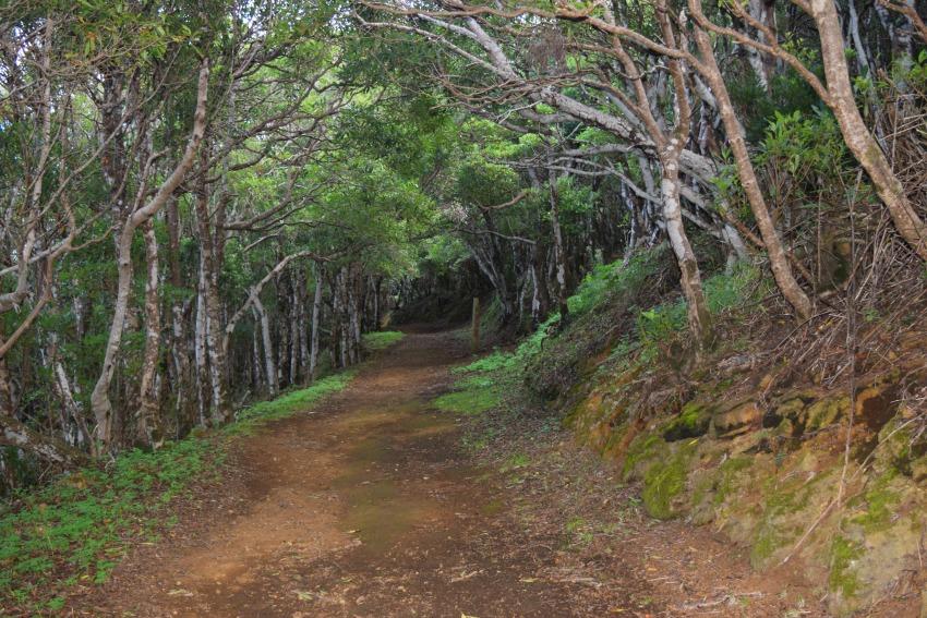 Wandern auf dem Monte Brasil