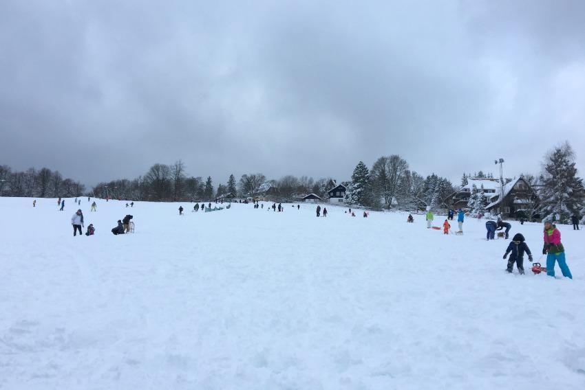 Rodeln im Harz Skiwiese