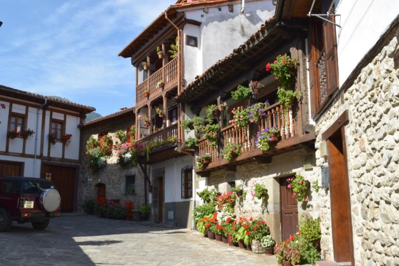 Picos de Europa - Überall Blumen in Potes