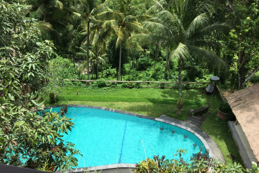 Ubud Highlights Bucu View Pool