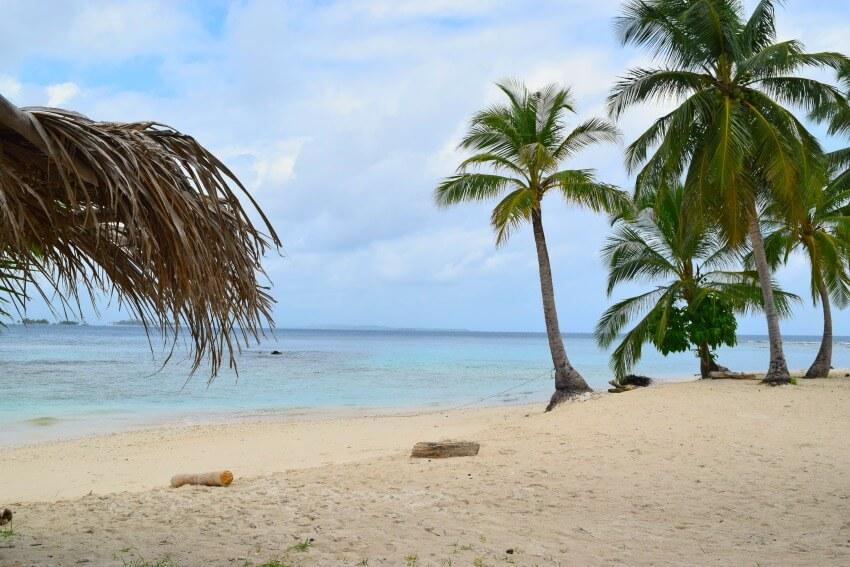 San Blas Inseln Isla Diablo Palmen
