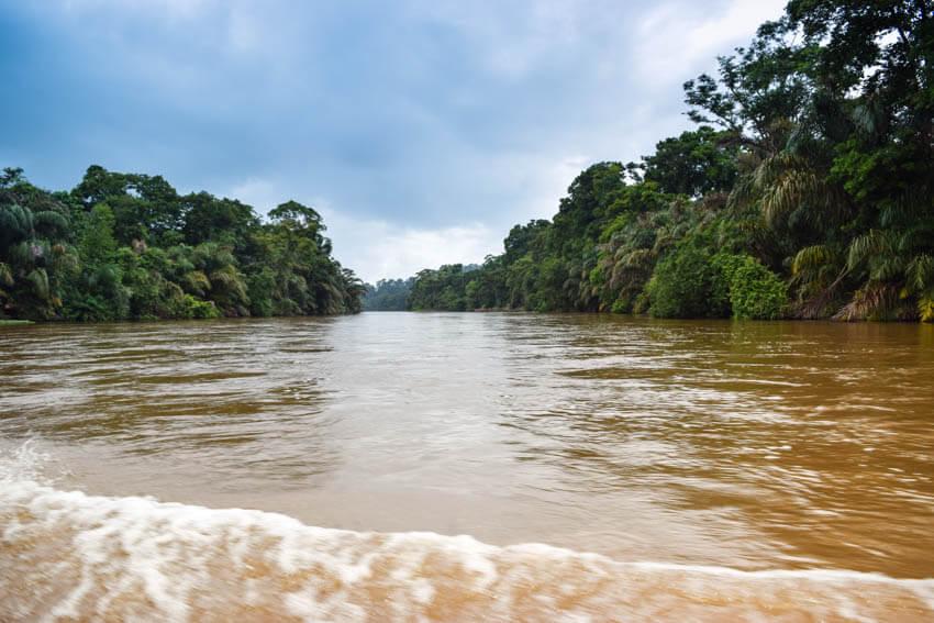 Tortuguero Nationalpark in Costa Rica Bootsfahrt