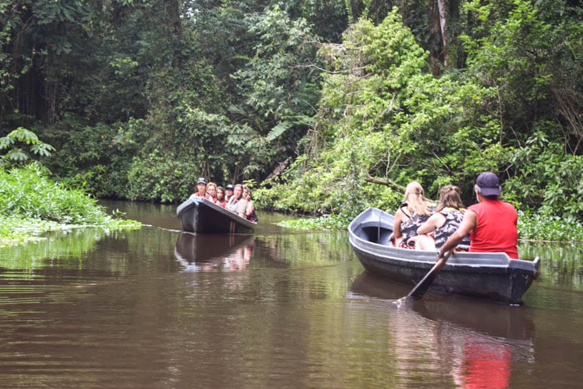 Tortuguero Nationalpark in Costa Rica Bootstouren