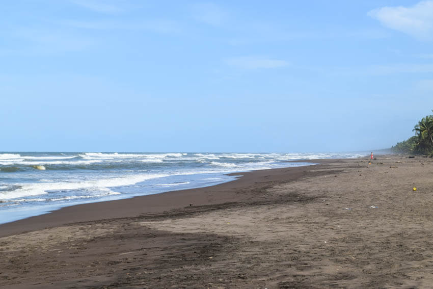 Tortuguero Nationalpark in Costa Rica Strand 1