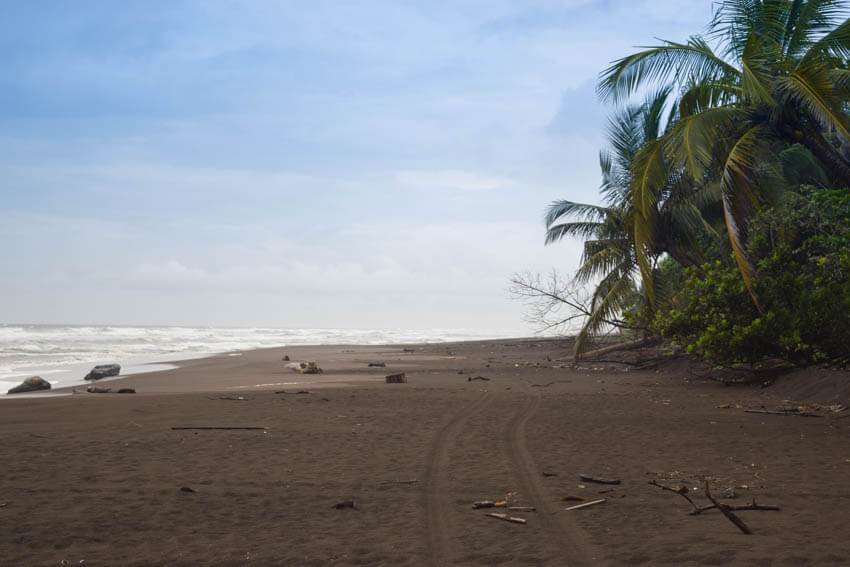 Tortuguero Nationalpark in Costa Rica Strand 2