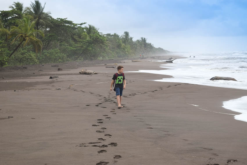 Tortuguero Nationalpark in Costa Rica Strand 3
