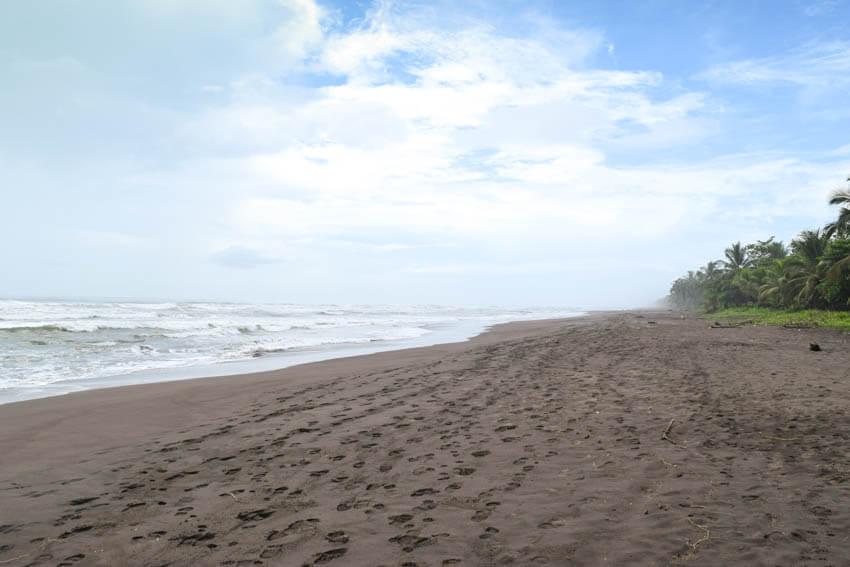 ortuguero Nationalpark in Costa Rica Strand