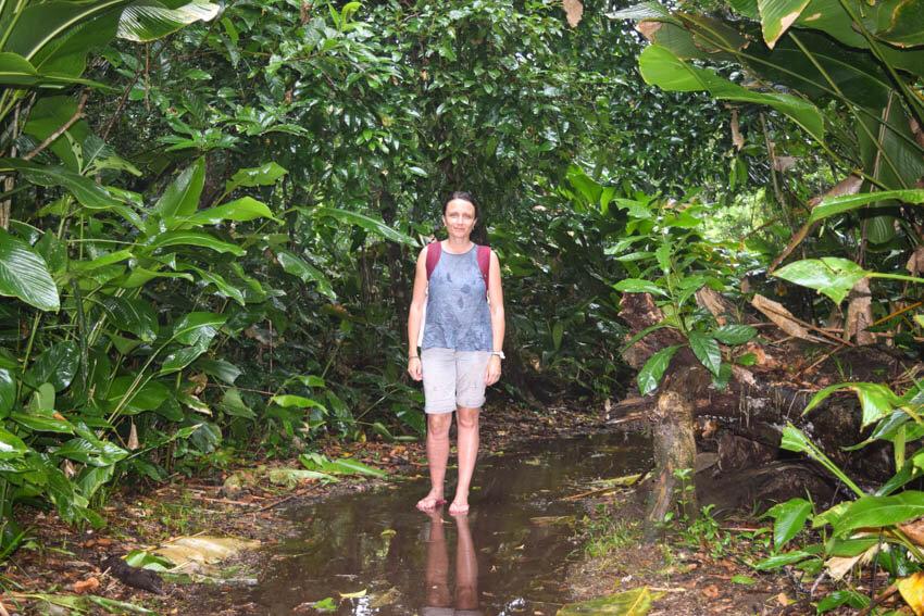Tortuguero Nationalpark in Costa Rica Wanderung