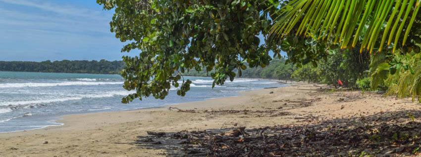 Costa Rica Roadtrip Cahuita