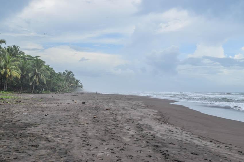 Costa Rica Roadtrip Tortuguero Strand