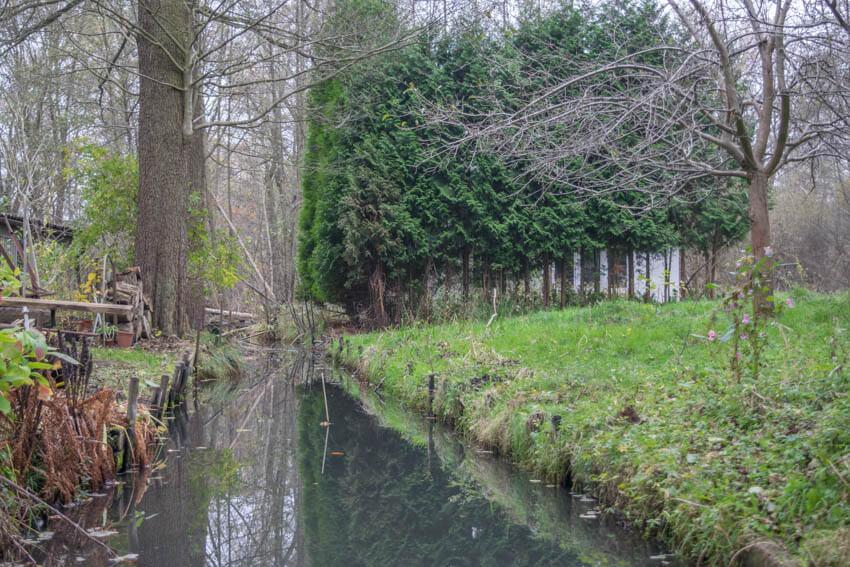 Spreewald im Winter und Herbst Flußverzweigung