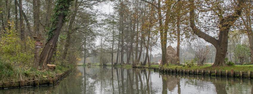 Spreewald im Winter und Herbst Kanal