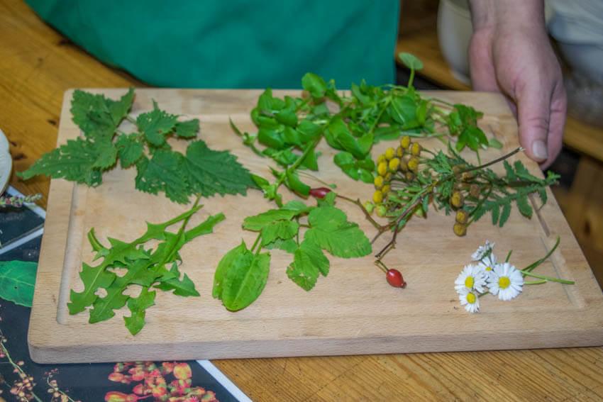 Spreewald im Winter und Herbst Kräuter