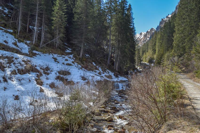Wanderung zur Martalm Schnee