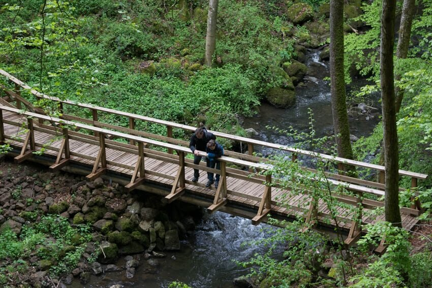 Vulkaneifel Vulkanerlebnispfad Brücke