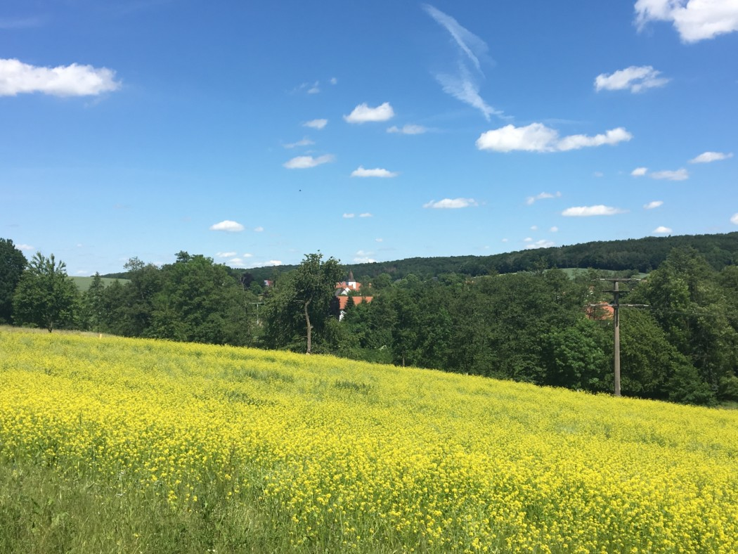 Die schönsten Kurztrips in Deutschland - 32 Tipps von Reisebloggern - Reiseblog Gecko Footsteps