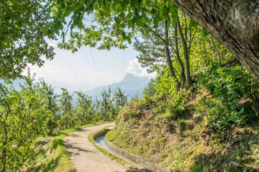 Marlinger Waalweg in Südtirol: Wanderung von Töll nach Lana - Reiseblog Gecko Footsteps